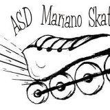 Logo Skating Fast