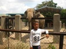 KEP-097.Zoo -s