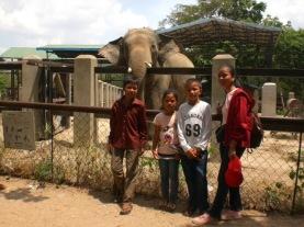Tamao Zoo (1) -s